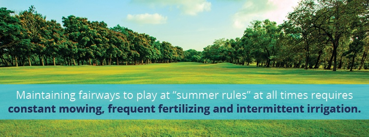 maintaining-fairways-for-summer-rules